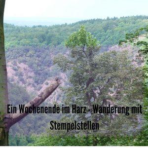 """Das Bild zeigt den Blick in einen Wald und trägt die Überschrift des Beitrags """"Ein Wochenende im Harz - WAnderung mit Stempelstellen"""""""