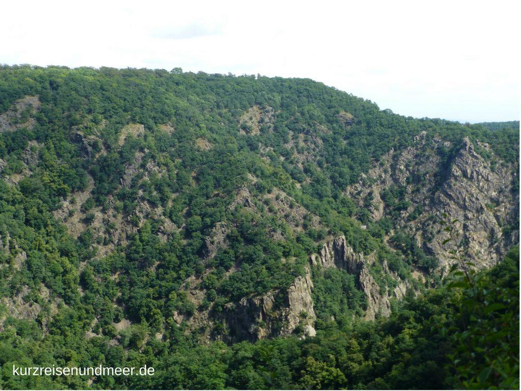 Das Bild zeigt die Sicht von der La Viershöhe aus in Richtung Rosstrappe