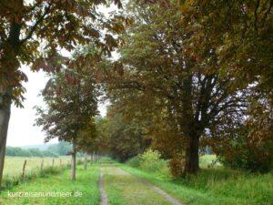 Der Wanderweg rund um den Nonnensee