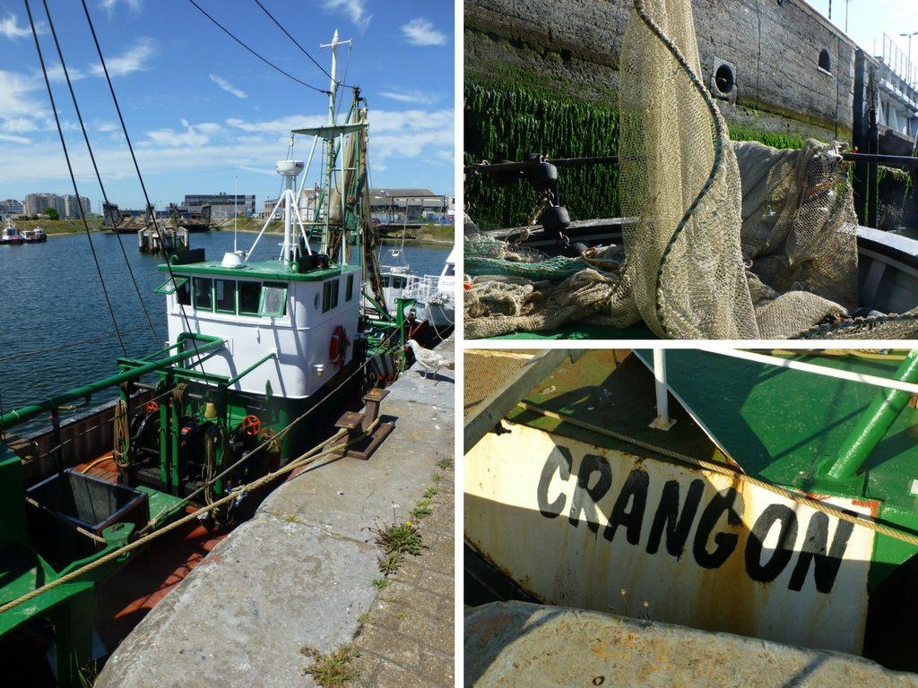 Die Collage zeigt verschiedene Ansichten des Krabbenkutter Crangon.