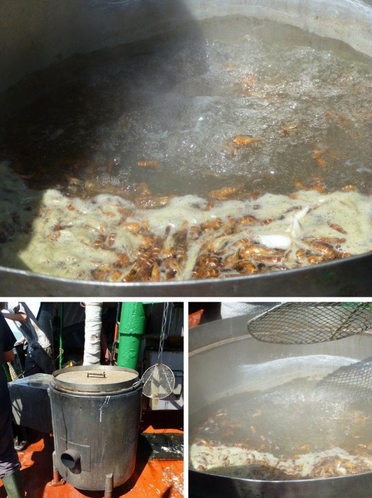 Das Bild zeigt den Kessel, in dem die Nordseekrabben für ein paar Minuten gekocht werden.