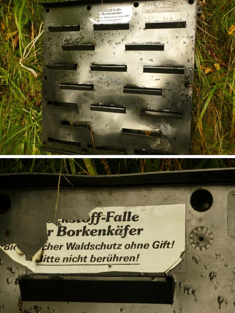 Diese Borkenkäfer-Falle ist eine Lockstoff-Falle ohne Gift