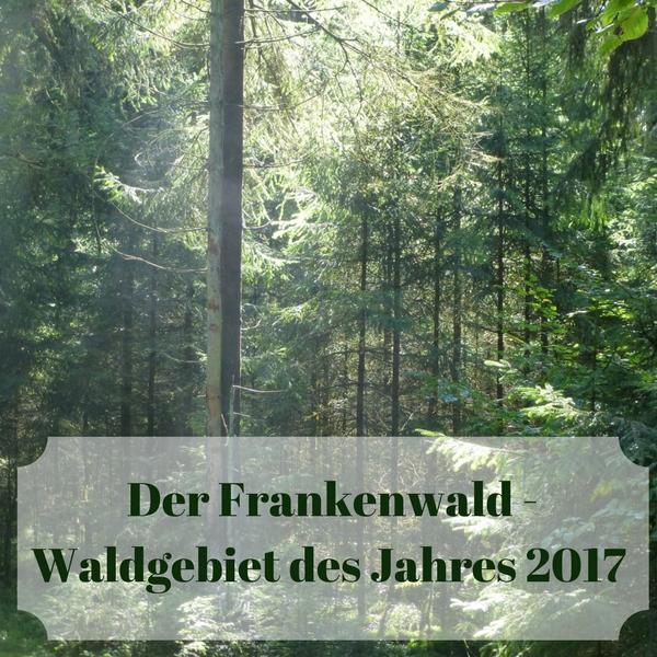 Kennst Du den Frankenwald? Er ist sehr schön und noch dazu Waldgebiet des Jahres 2017