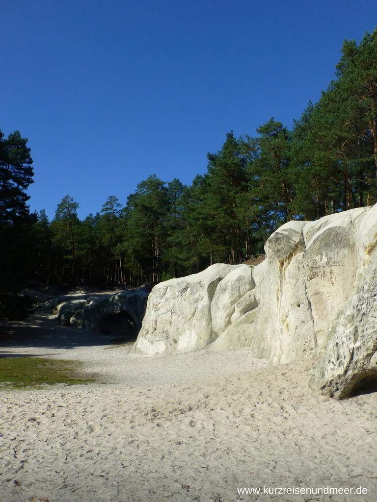 Der weiche Sandsteinfelsen zieht sich über eine Fußballfeld große Lichtung