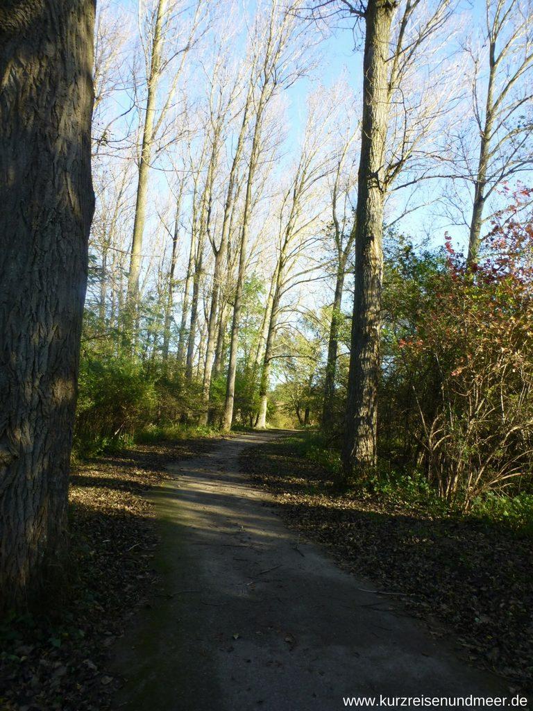 Wanderweg zum Weddeort