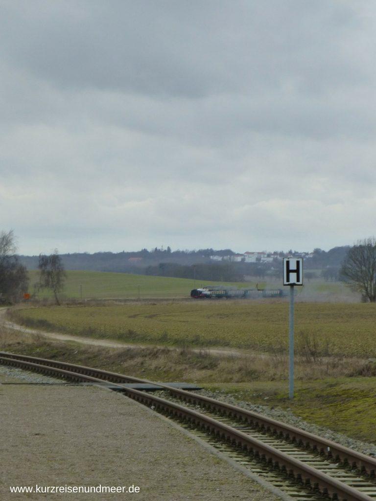 Rasender Roland vor der Rügenschen Landschaft
