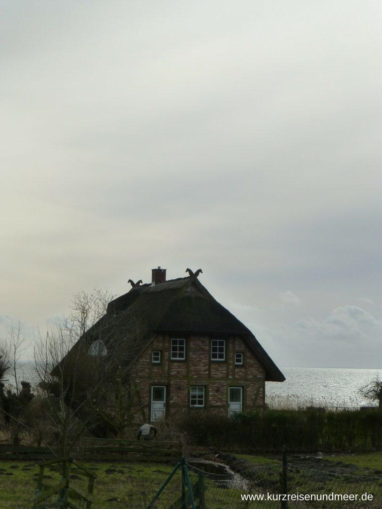 Haus in Landarchitektur mit Windbrettern in Form von Pferdeköpfen